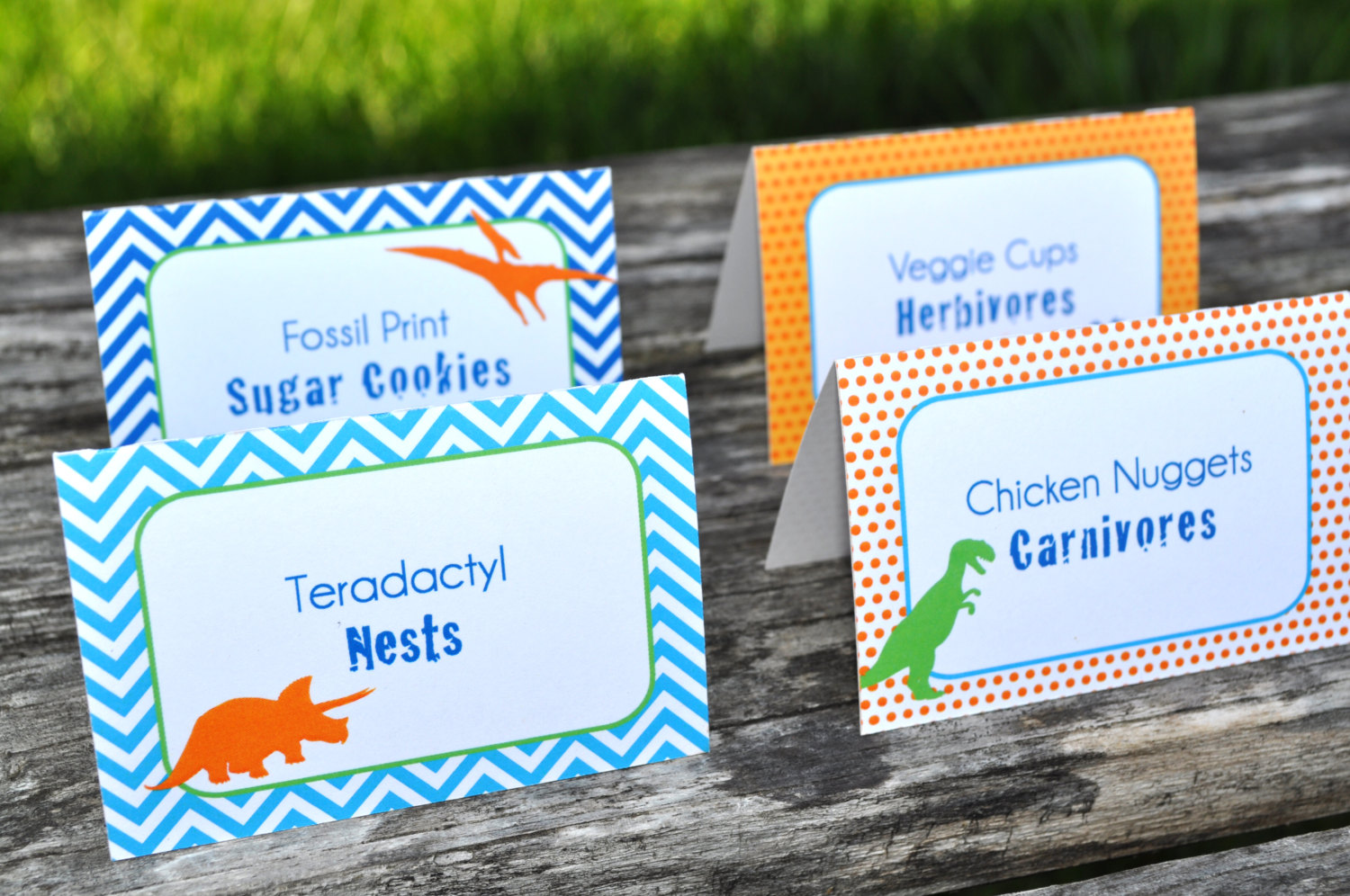 Dinosaur Birthday Party Food Labels Theme