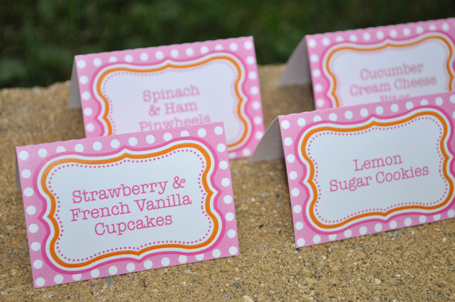 Food Labels, Buffet Labels, Candy Labels, Place Cards, Girls 1st ...