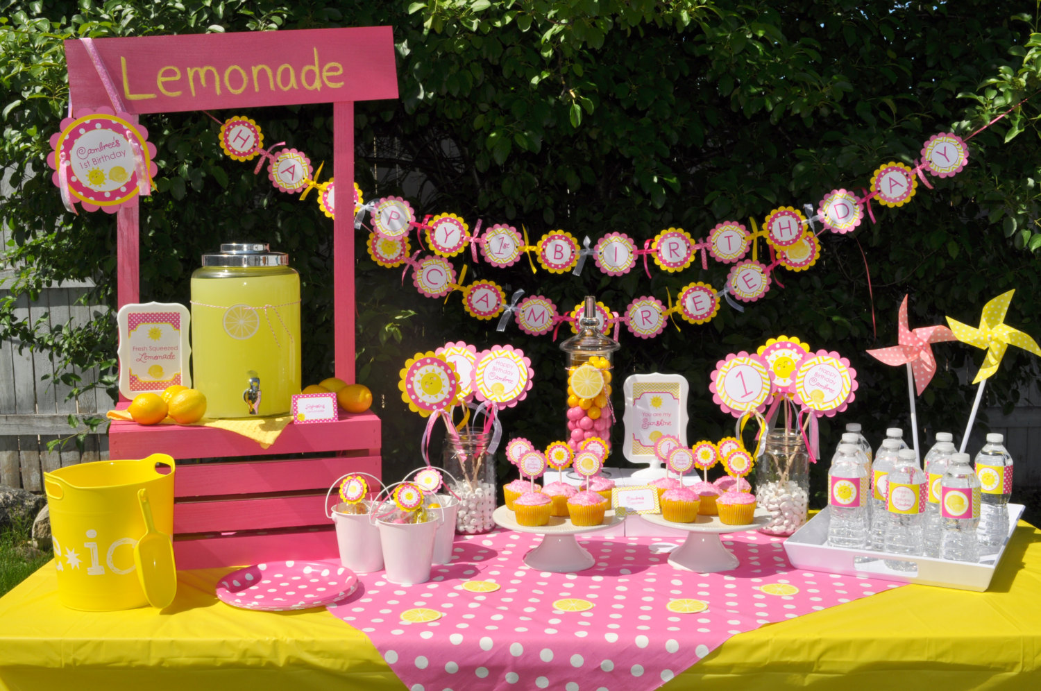 Lemonade And Sunshine Birthday 4x6 Signs You Are My Sunshine Pink Lemonade Birthday Party Decorations 2 4x6 Printed Signs