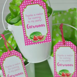 Watermelon Party Favor Tags Thank You Favors Hang Girls Birthday Decorations 1st Set Of 12